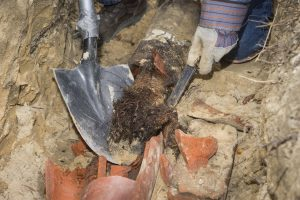 When to Replace Your Sewer Line